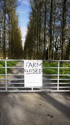 What Would Happen if we Abandoned Britain's Farms and Left Them to Nature?