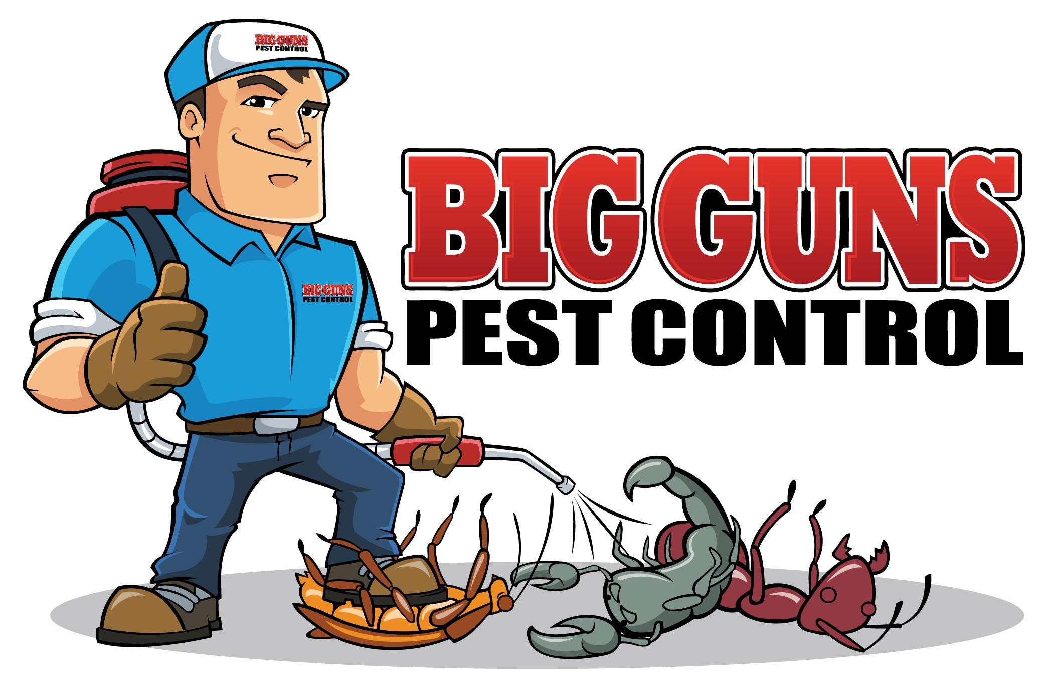 Use These Ideas To Get A Grip On Your Pest Problem
