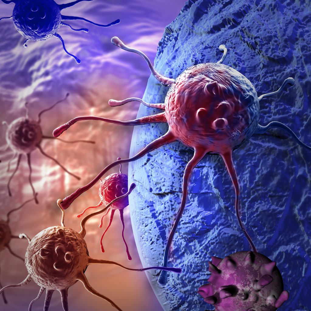 Cancer cell - Results RNA